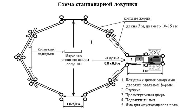 Б. Схема стационарной ловушки.